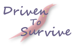 Driven To Survive